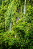 Tropical waterfall Royalty Free Stock Photos