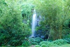 Tropical waterfall of St. Rose on La Reunion island Stock Photo