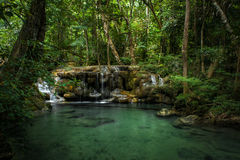 Tropical Waterfall in thailand stock photos