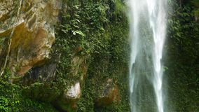 Tropical Waterfalls. A Clip from the 250 ft 76 m high Katibawasan tropical waterfall, Camiguin Island. The waterfall is surrounded by orchids and ferns stock footage