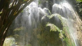 Tropical Waterfalls. Clip from a huge waterfall, with mineral deposit rock formations, in a tropical bamboo forest. Originally taken in 4K resolution and stock footage