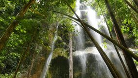 Tropical Waterfalls 07 stock footage