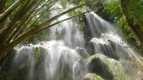 Tropical Waterfalls. Clip from a huge waterfall, with mineral deposit rock formations, in a tropical bamboo forest. Originally taken in 4K resolution and stock video footage