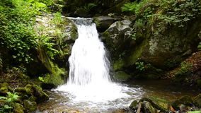 Tropical waterfalls in the lush forest stock video footage