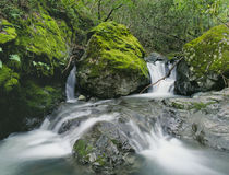 Tropical Waterfalls and Lush Green Forest Royalty Free Stock Images