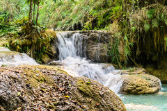 Tropical Waterfalls Stock Images