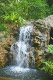 A Tropical Waterful in a Singapore. A tropical waterfall in a park in Singapore Stock Image