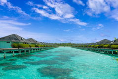 Tropical Waters Stock Images