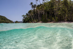 Tropical Waters and Islands. Beautiful islands are bathed by clear, warm waters in Raja Ampat, Indonesia. This tropical area is part of the Coral Triangle and is royalty free stock image