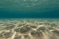 Tropical waters in the Red Sea. Stock Image