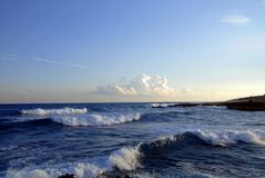 Tropical Waves Royalty Free Stock Image