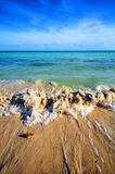 Tropical Waves Royalty Free Stock Images