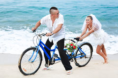 Tropical wedding. Wedding on the tropical beach Royalty Free Stock Photography
