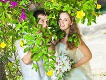 Tropical wedding Royalty Free Stock Photos