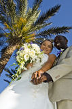 Tropical wedding couple holding hands. A smiling mixed race wedding couple holding hands under a palm tree Stock Photography