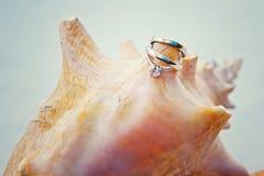 Tropical wedding and seashell wedding rings stock photo