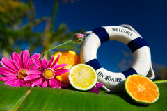 Tropical welcome on board Stock Images