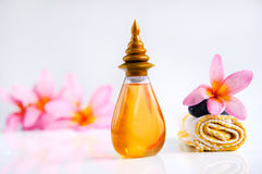 Tropical wellness spa & aromatherapy concept. With plumeria flower and stones, isolated on white background Royalty Free Stock Image