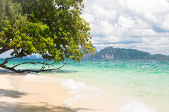 Tropical white sand andaman beach Royalty Free Stock Photo
