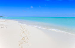 Tropical white sand beach Royalty Free Stock Image