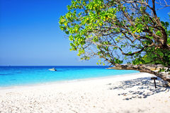 Tropical white sand beach arainst blue sky Royalty Free Stock Images