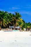 Tropical white sand beach with green palm trees. Exotic island paradise Stock Images