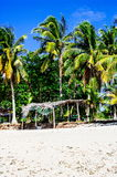 Tropical white sand beach with green palm trees. Exotic island paradise Stock Image