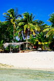 Tropical white sand beach with green palm trees. Exotic island paradise.  Stock Photos
