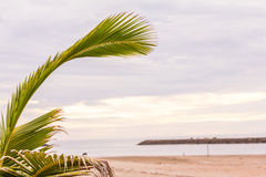 Tropical white sand beach Royalty Free Stock Images