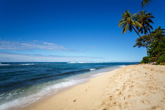 Tropical white sand beach in Oahu, Hawaii Stock Images