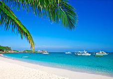 Tropical white sand beach Stock Photos