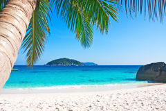 Tropical white sand beach with palm trees. Similan islands, Thailand, Phuket Royalty Free Stock Images