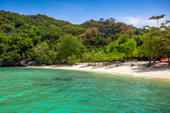 Tropical white sand beach with trees. Royalty Free Stock Images