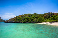Tropical white sand beach with trees. Stock Photos