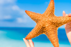 Tropical white sand with red starfish in hands background the sea Royalty Free Stock Images
