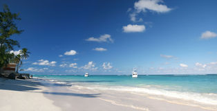 Tropical White Sands Beach, Caribbean Ocean Royalty Free Stock Photography