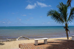 Tropical white sandy beach with bench   in Las Terrena Royalty Free Stock Image
