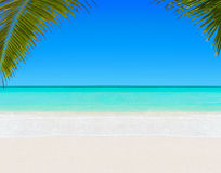 Tropical White Sandy Palm Beach And Clear Ocean Water Background Royalty Free Stock Photography