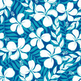 Tropical white and turquoise graphic seamless pattern Stock Image