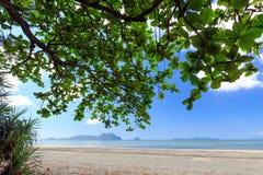 Tropical wild beach Stock Photography