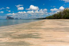 Tropical wild beach Stock Images