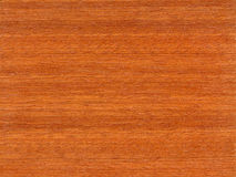 Tropical Wood Textures Royalty Free Stock Images