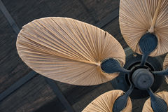 Tropical wooden ceiling fan stock photos