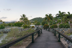 Tropical wooden landscape with wooden pathway Stock Photos