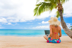 Tropical work Royalty Free Stock Photography