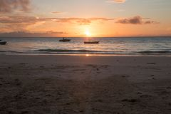 Tropical Zanzibar Beach Sunrise royalty free stock images