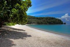 Tropicale Fotografie Stock
