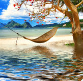 Tropicale distenda Fotografie Stock Libere da Diritti