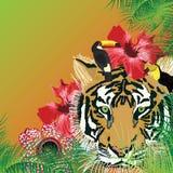 Tropicale fresco selvaggio illustrazione di stock