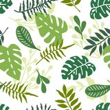 Tropicall seamless background Royalty Free Stock Photo